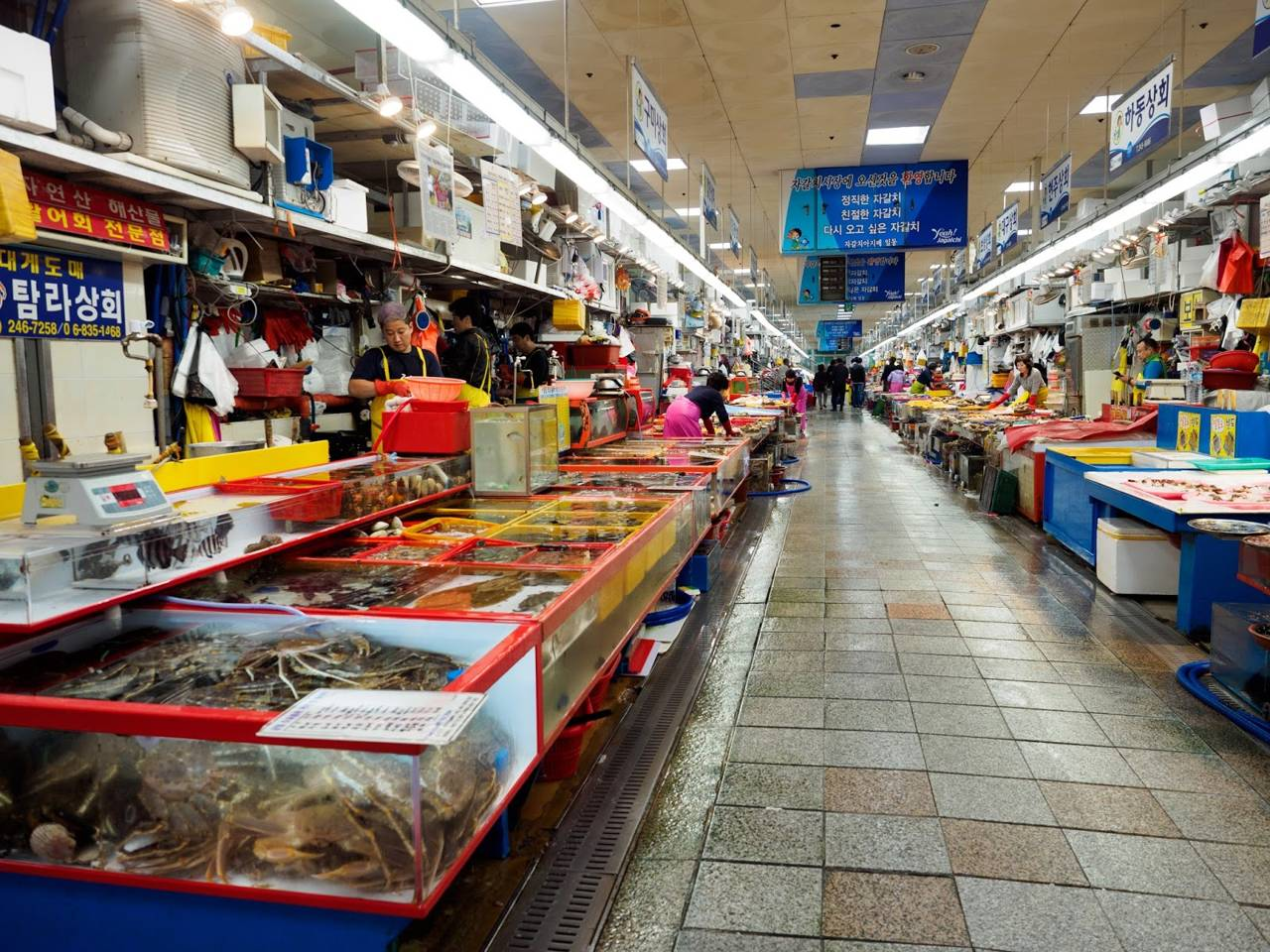 korea busan attraction Jagalchi Fish Market