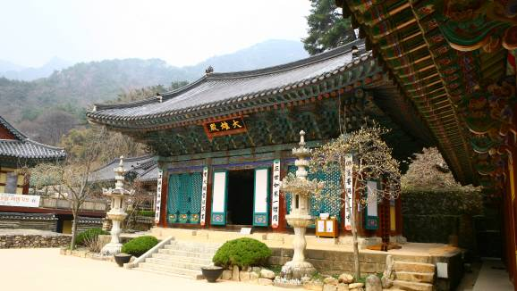 Daejeon South Korea Travel Donghaksa Temple Buddhist Peace Scenic  Metropolis Science Technology History Nature